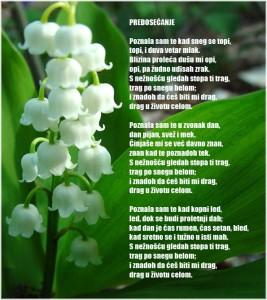 Poezija ~ Poetry