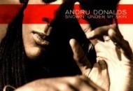Album_Andru Donalds - Snowin' Under My Skin