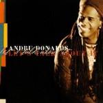 Album_Andru Donalds - Let