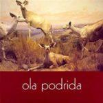 Ola Podrida – Run Off The Road